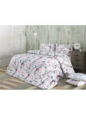 Комплект постельного белья SIENA ранфорс, 140ТС, 100% хлопок, евро ISSIMO Home. Цвет: молочный