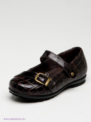 Туфли Зебра. Цвет: коричневый