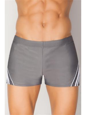 Плавки-шорты мужские TORRO. Цвет: серый