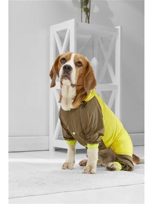 Дождевик для средних пород собак весом 11-17 кг и длиной по спинке около 45 см Nothing but Love. Цвет: желтый, коричневый, салатовый