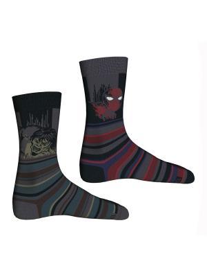 Носки, 2 пары Master Socks. Цвет: темно-серый, черный