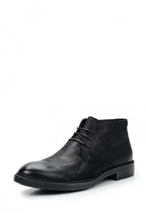 Ботинки классические Vitacci. Цвет: черный
