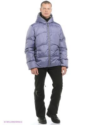 Куртка Stayer. Цвет: фиолетовый, черный, серый