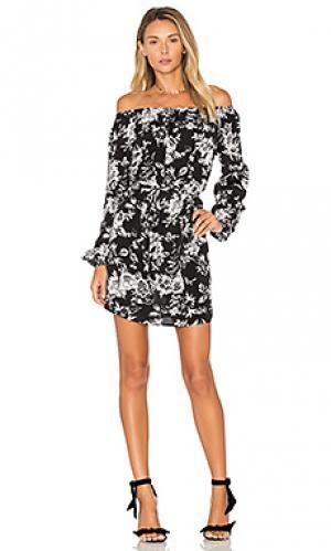 Платье cala De Lacy. Цвет: black & white
