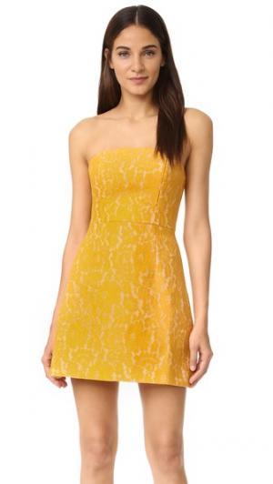 Мини-платье из кружева Every Way Keepsake. Цвет: оранжевый