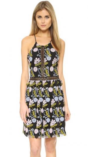 Платье из цветочного кружева Cynthia Rowley. Цвет: голубой