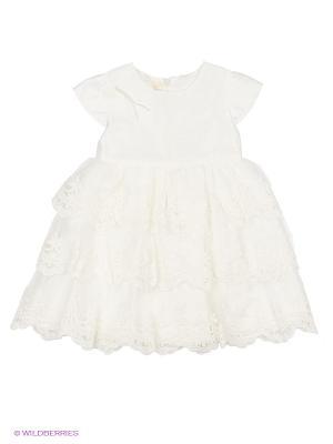 Платья Molly Rou
