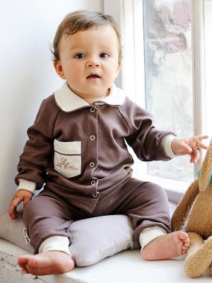 Кофточка Lucky Child. Цвет: коричневый, молочный