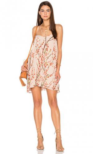 Платье Lucca Couture. Цвет: беж