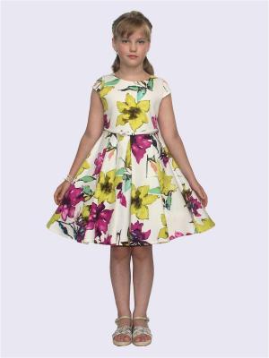 Платье Кармела Shened