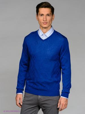 Пуловер Gregory. Цвет: синий