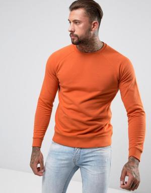 ASOS Оранжевый свитшот. Цвет: оранжевый