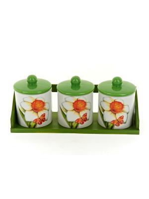 Набор банок для сыпучих продуктов Нарцисс, Polystar. Цвет: светло-зеленый