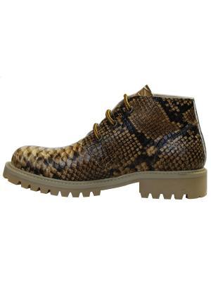 Ботинки Gilda Tonelli. Цвет: коричневый