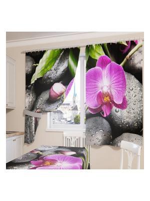 Фотошторы Орхидея на камнях Сирень. Цвет: черный, зеленый, фиолетовый