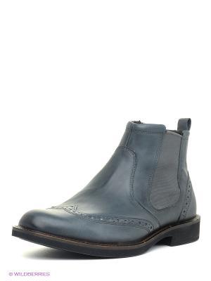Ботинки ECCO. Цвет: серо-голубой