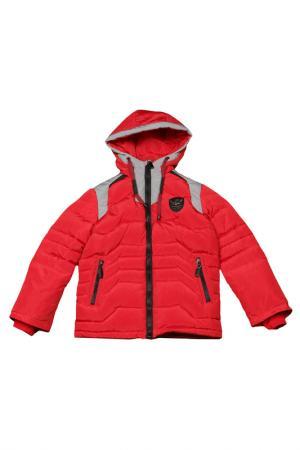 Куртка Arctic Goose. Цвет: шафран, светло-серый