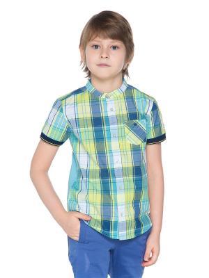 Рубашки Gino de Luka. Цвет: салатовый, голубой, желтый