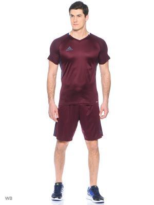 Футболка спортивная Adidas. Цвет: сливовый