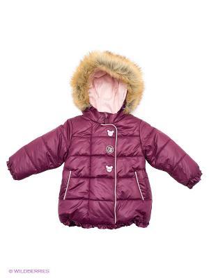 Куртка Бимоша. Цвет: сливовый