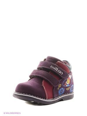 Ботинки Milton. Цвет: фиолетовый