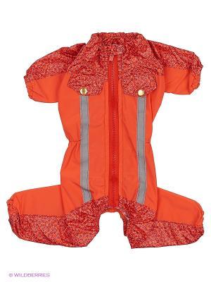 Дождевик холодный (Цверг-Пинчер), девочка ТУЗИК. Цвет: оранжевый