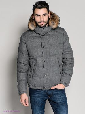 Куртка 18CRR81 CERRUTI. Цвет: серый