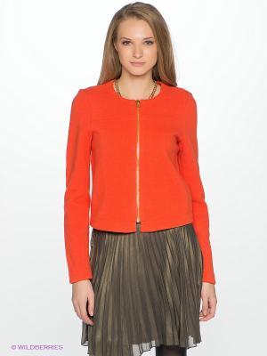 Жакет Vila. Цвет: оранжевый