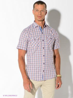 Рубашка Maestro. Цвет: голубой, оранжевый, фиолетовый