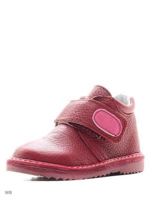 Ботинки ФОМА. Цвет: бордовый