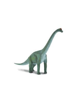 Брахиозавр, L 23 см Collecta. Цвет: зеленый
