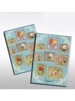 Обложка для паспорта Цветочная коллекция Magic Home. Цвет: серо-голубой, голубой, серебристый