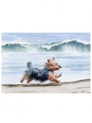Обложка для проездного Собачка на пляже Tina Bolotina. Цвет: голубой, светло-серый