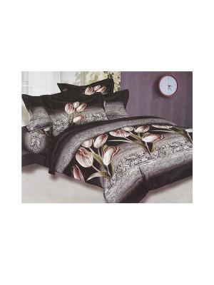 Комплект постельного белья 6 предметов HAMRAN. Цвет: черный, зеленый, серый