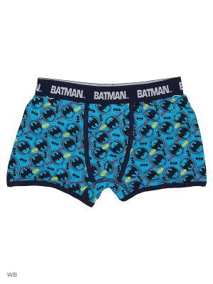 Трусы шорты #Batman Modis. Цвет: голубой