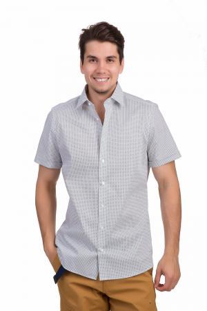 Рубашка с коротким рукавом Olymp. Цвет: разноцветный
