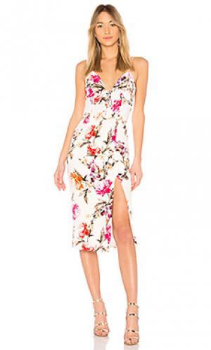 Платье миди lucile floral NICHOLAS. Цвет: белый