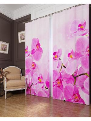 Фотошторы Сиреневая орхидея , Блэкаут Сирень. Цвет: розовый, белый, серый, коричневый