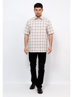 Рубашка BERTHIER. Цвет: сиреневый, белый