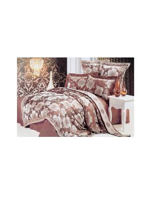 Комплект постельного белья 6 предметов HAMRAN. Цвет: коричневый