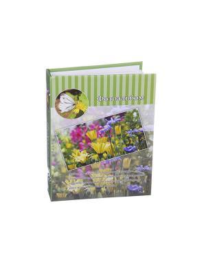 Фотоальбом на 200 фото 10х15см, 17,5х23см, бумага, пластик, KONONO. Цвет: зеленый