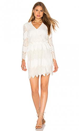 Платье с запахом white shores WAYF. Цвет: белый