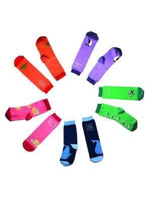 Набор носков Big Bang Socks. Цвет: темно-синий, зеленый, оранжевый, розовый, фиолетовый