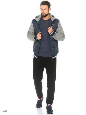 Куртка Stayer. Цвет: темно-синий, темно-серый