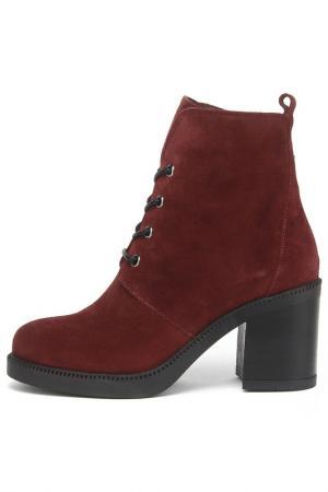 Ботинки Felicita. Цвет: бордо
