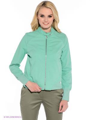 Куртка F5. Цвет: зеленый