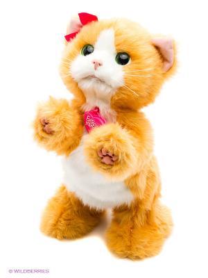 Дэйзи игривый котенок Hasbro. Цвет: рыжий