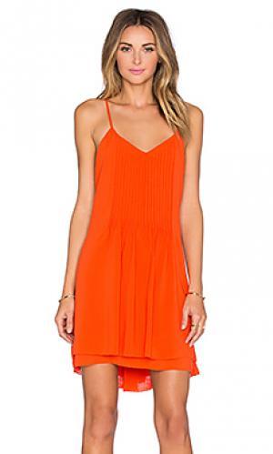 Платье spring Sanctuary. Цвет: оранжевый