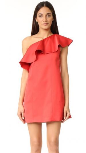 Платье Julia от Zac Posen. Цвет: robin