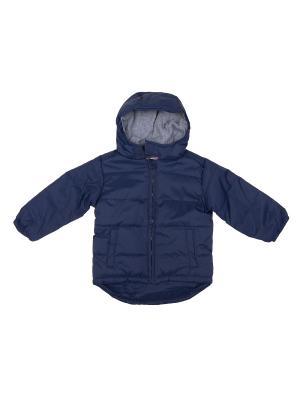 Куртка FOX BBW17-60501/Темно-синий